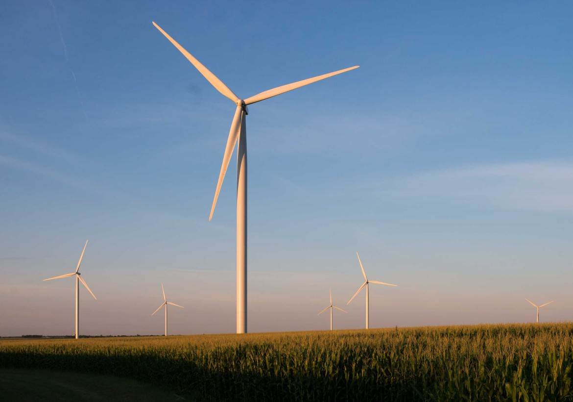 Photo of windmills among grain fields